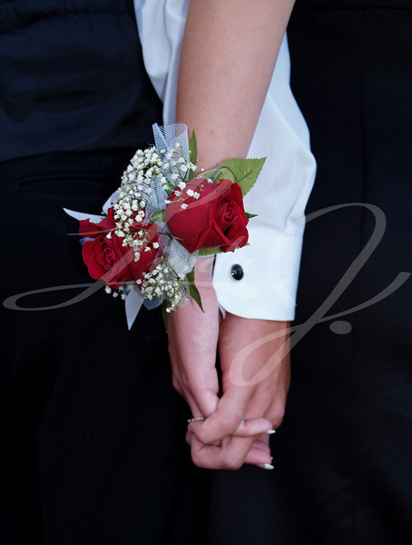 Red rose wrist corsage-- with babies breath and blue and white ribbons.